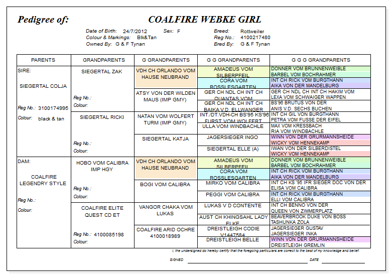 Pedigree of Coalfire Webke Girl
