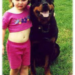 Codie with Kid: Our Rotties have stable temperament and are friendly with kids
